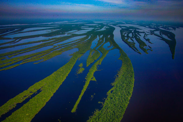 River in the Amazon Rainforest. Photo by Ricardo Stuckert | Canva.