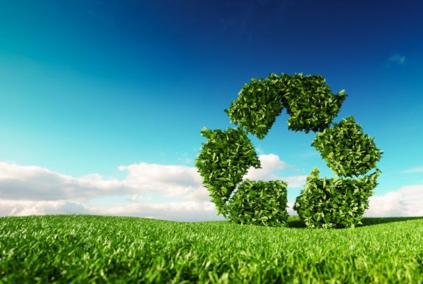 Eco friendly recyclation concept. 3d rendering of green recycle icon on fresh spring meadow with blue sky in background. Photo by Petmal | Canva.