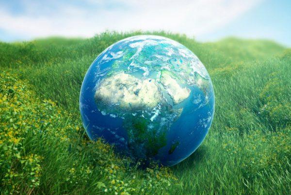 Planet earth on green grass, computer artwork.